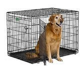 MidWest Homes for Pets iCrate Folding Metal Dog Crate