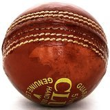 Pro Impact Leather Cricket Ball